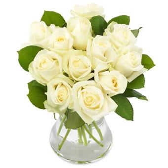 bloemen gennep rozen wit lucassen